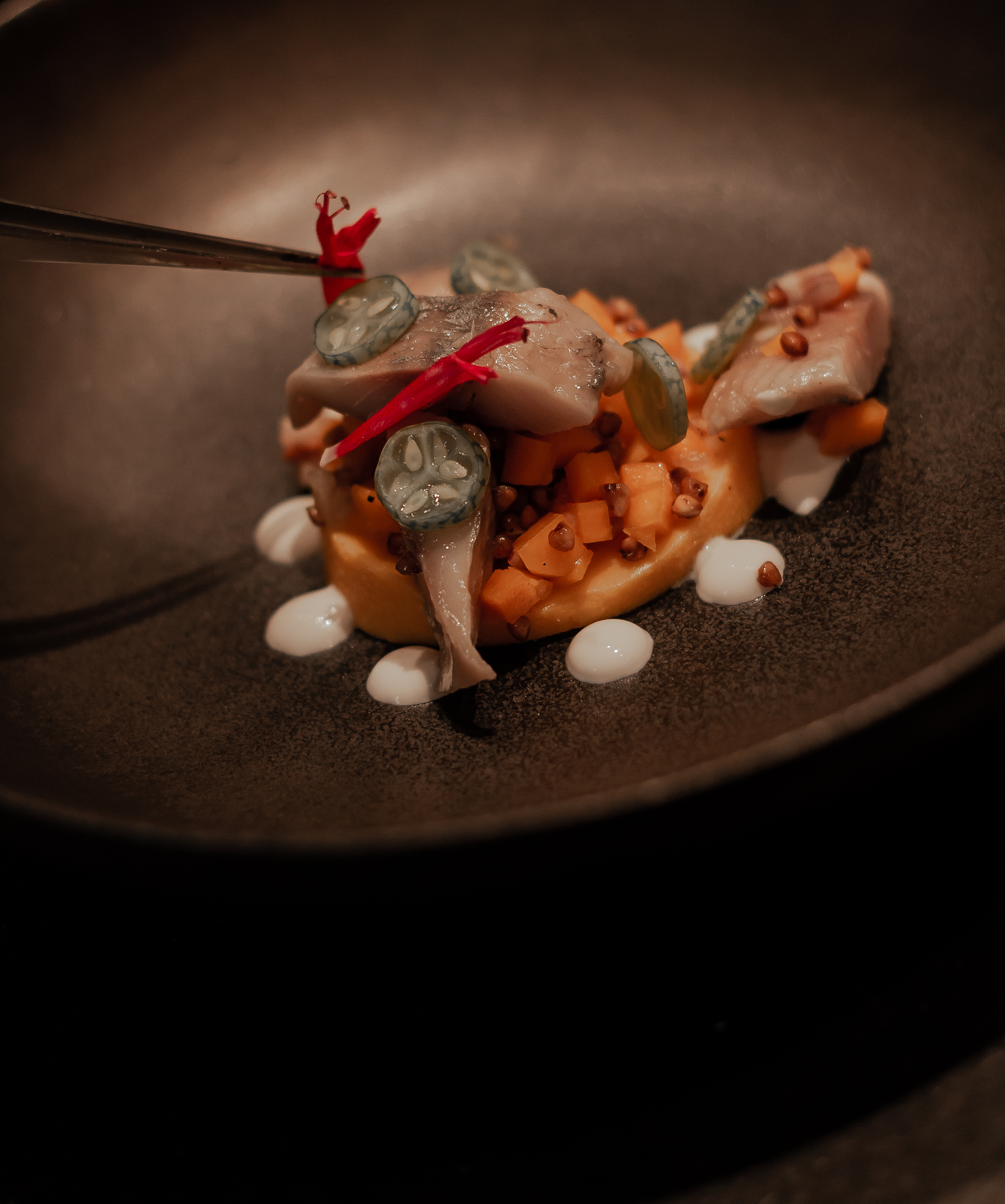 hedone-restaurant-toulouse-51