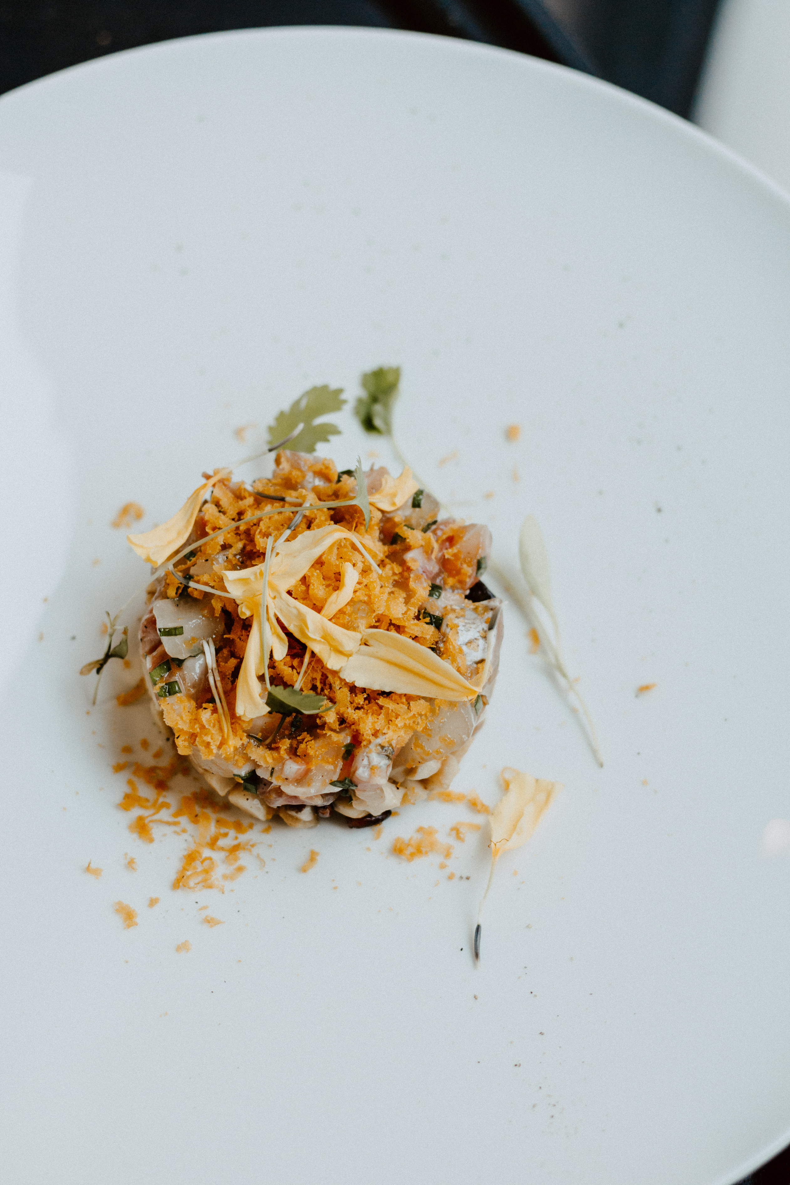 hedone-restaurant-toulouse-7